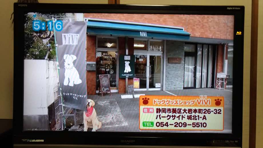 ViVi店舗